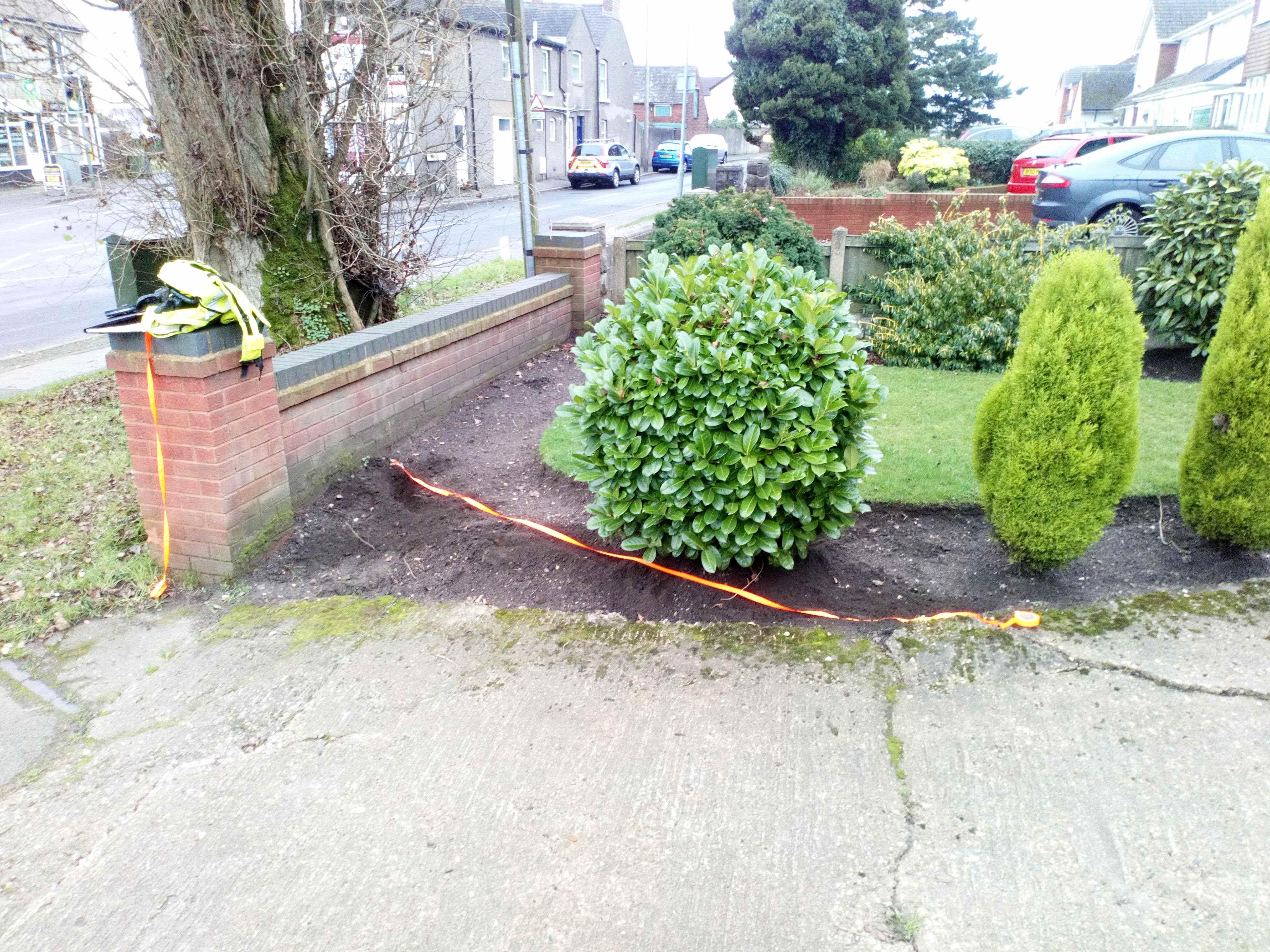 2017 / 2018 Investigation into Alleged Damaged from Poplar